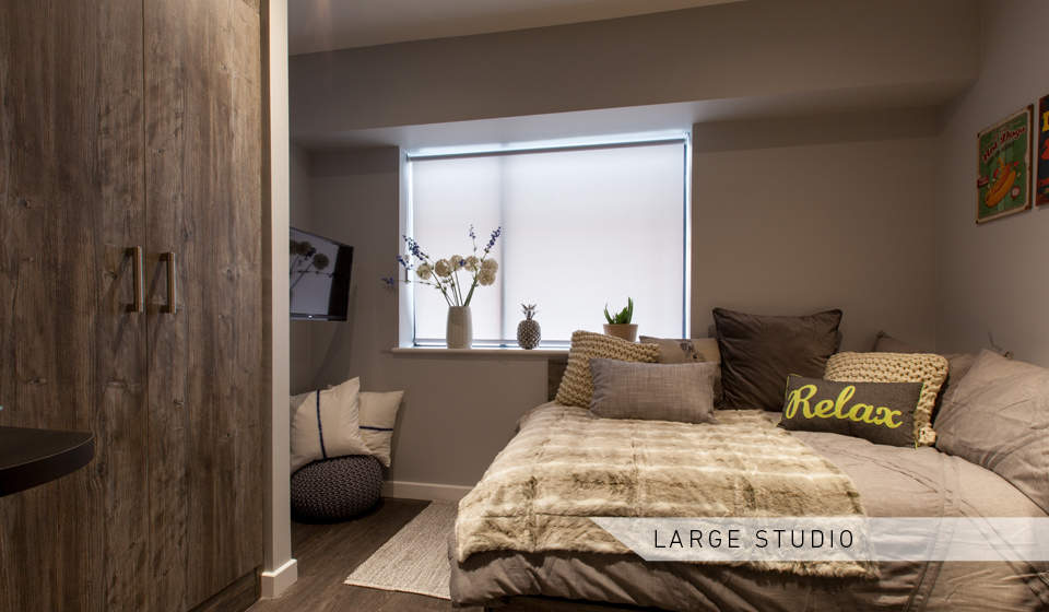 Large_studio_bed_area_1