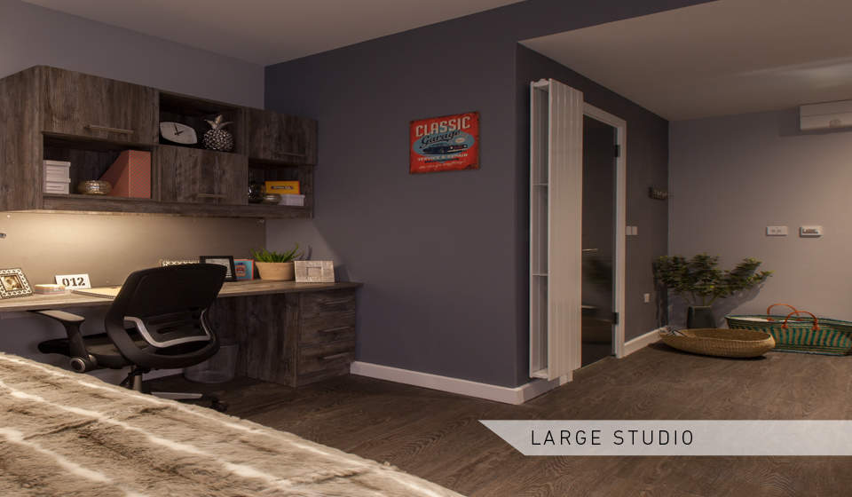 Large_studio_bedroom_and_study_area