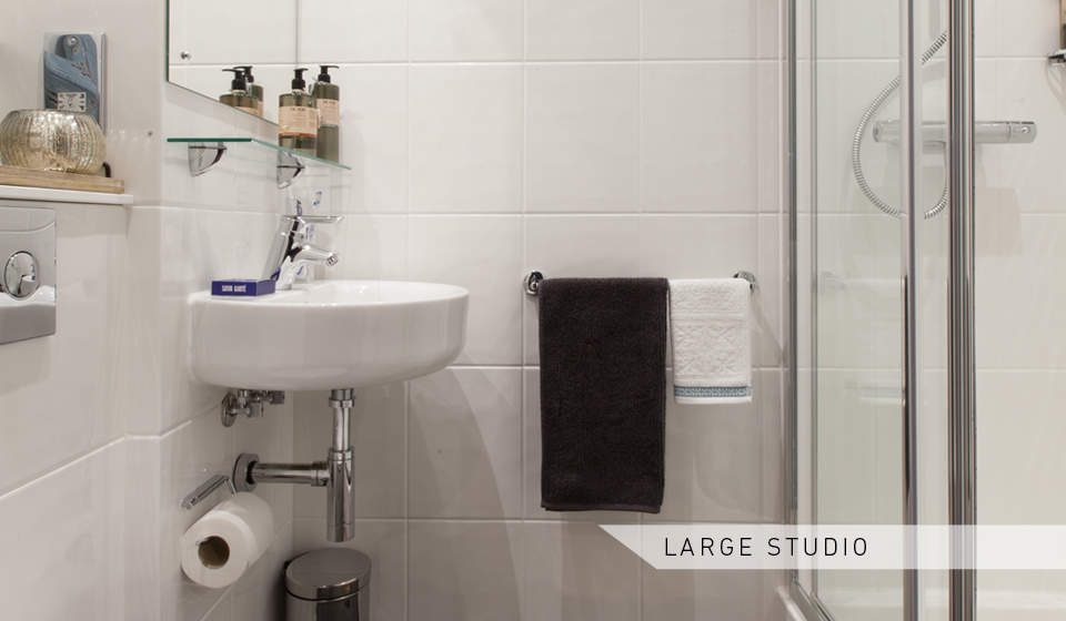 Large_studio_toilet_and_shower