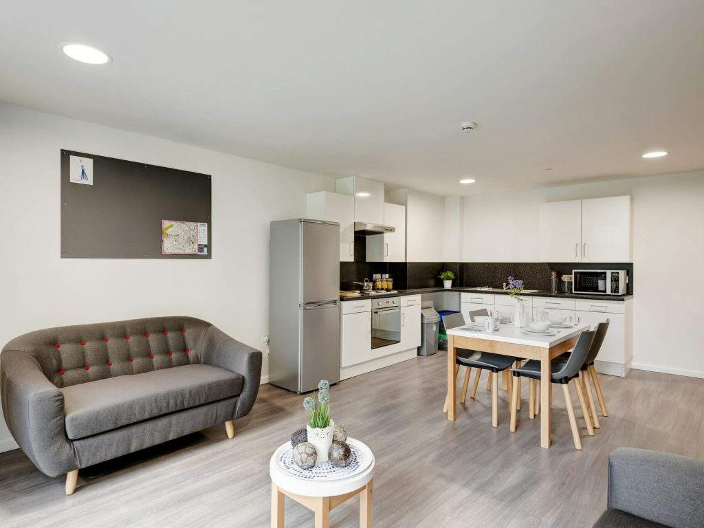 Fresh-student-living-sheffield-sharman-court-05-shared-flat-living-area-photo-04-1024x768